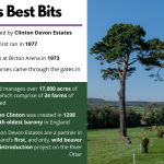 Bicton's Best Bits